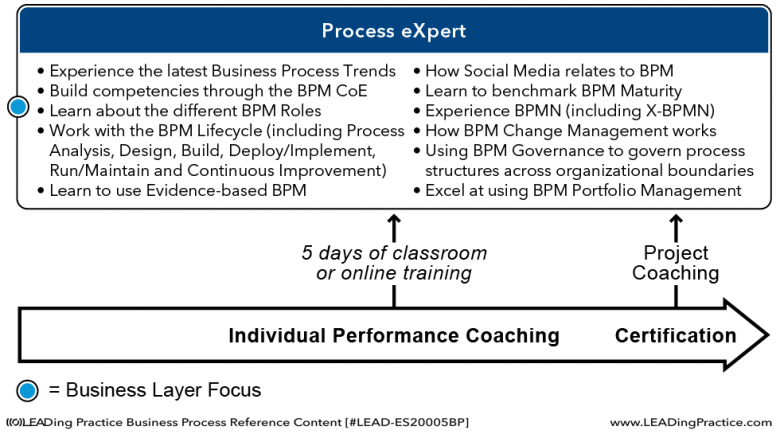 The Process eXpert learning model.